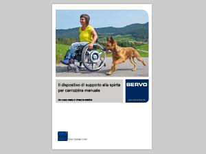 motore SERVO aviver